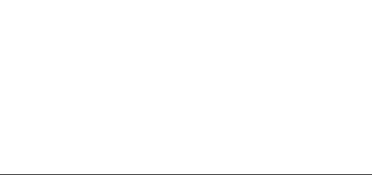 GUNDT Amrum